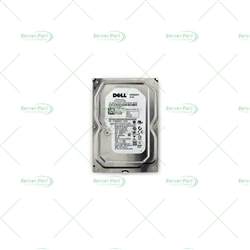 DELL Hard Disk Drive  250GB 7200RPM SATA 3.5IN LOW PROFILE(1.0INCH) HDD FOR POWEREDGE & POWERVAULT SERVER (0H962F).